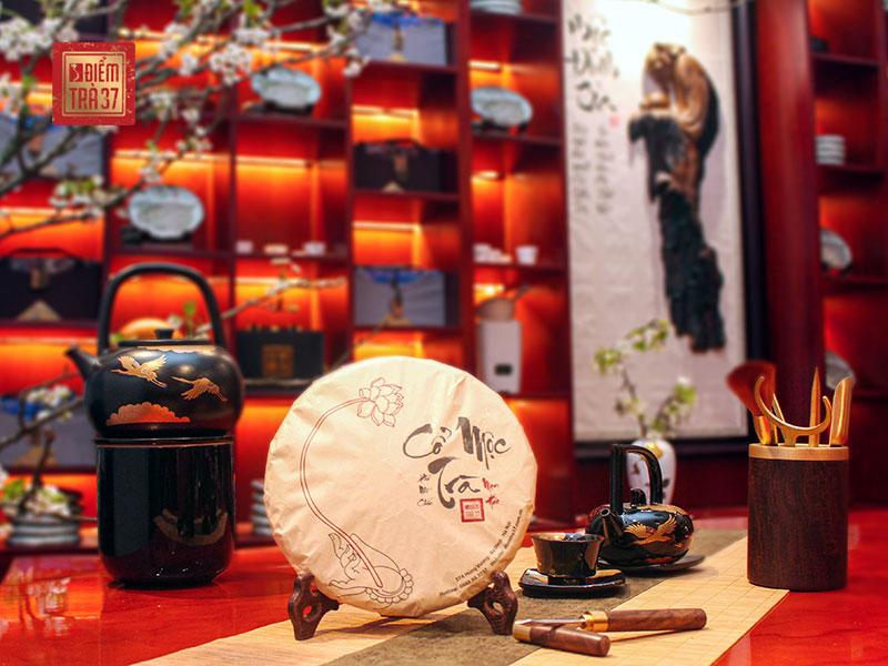 Cổ Mộc Trà thuộc dòng trà bánh Phổ Nhĩ được chế biến từ lá cây trà Shan Tuyết 500 năm tuổi